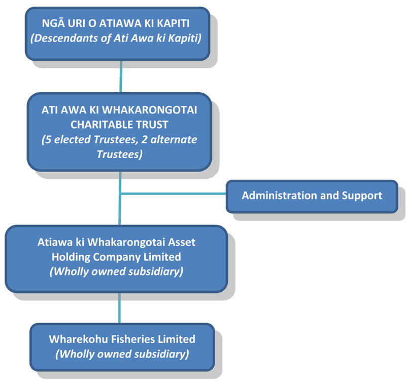 Iwi Support Structure - diagram