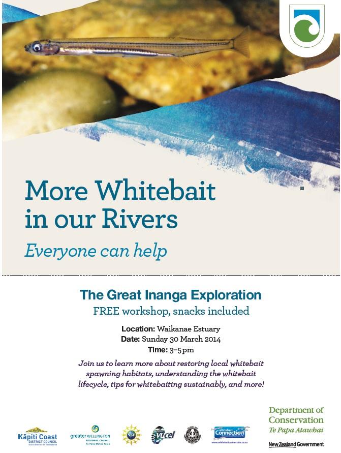 Inanga Workshop Flyer - 30 March 2014